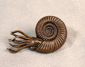 xenodiscus ammonite reconstruction Smithsonian bronze