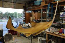Extinct sawfish model
