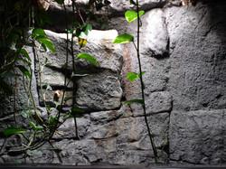 False stone vent cover
