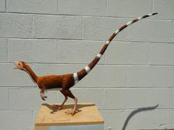 Sinosauropteryx reconstruction