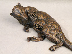Pediomys, Smithsonian bronze
