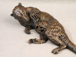 Pediomys, Smithsonian bronze