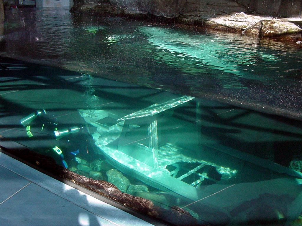 Sunken boat, sea otter habitat