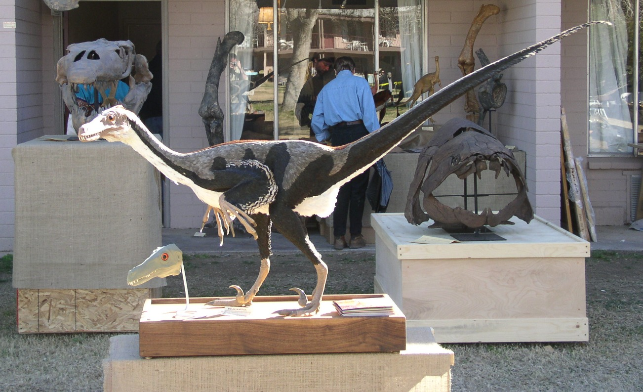 Velociraptor reconstruction