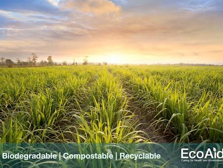 EcoAid - NEW Products Spotlight
