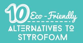 10 Eco-Friendly Alternatives to Styrofoam
