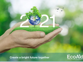 Celebrate a Bright Future for Our Planet