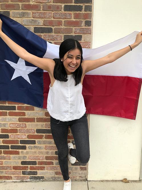 Texas Flags Two Sizes