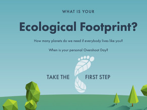 What is your Environmental Footprint?