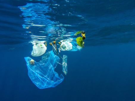 Plastic pollution harms the bacteria that help produce the oxygen we breathe