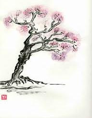 Cours de Qi Gong à Belin-Beliet (33)