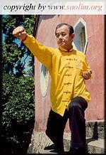 Saolim Kung fu Bordeaux