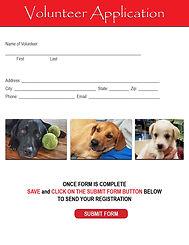 Volunteer Application.jpg