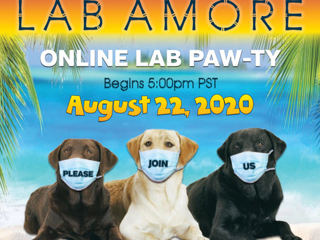 CALLING ALL DOG LOVERS - Don't Miss This Event!