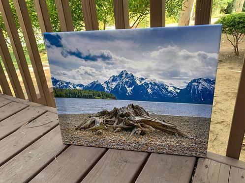 Wondering in Wyoming | 16x20 Canvas