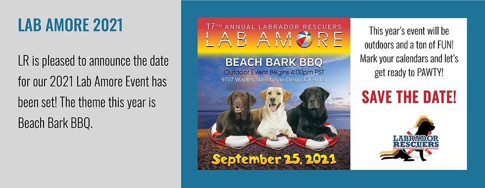 Lab Amore 2021 Slide Tickets.jpg