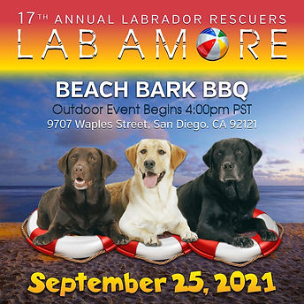 Lab Amore Save the Date 2021.jpg