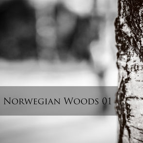 Norwegian Woods 01