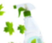 Glass Cleaner with Leaves_edited_edited.png