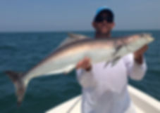 Ft Myers wreck fishing charter