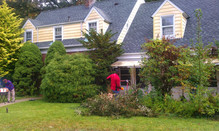 Clearing a yard for a Sister