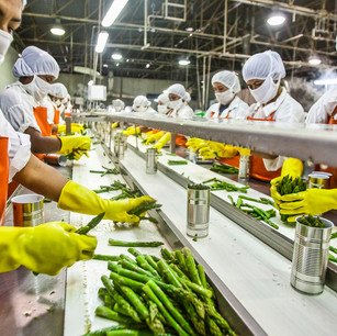 Production-Linked-Incentive Scheme for Food Processing Industries