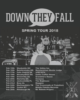 down they fall flyer
