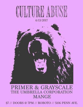 culture abuse flyer