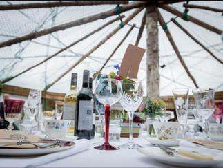 Yurt in a magical field!
