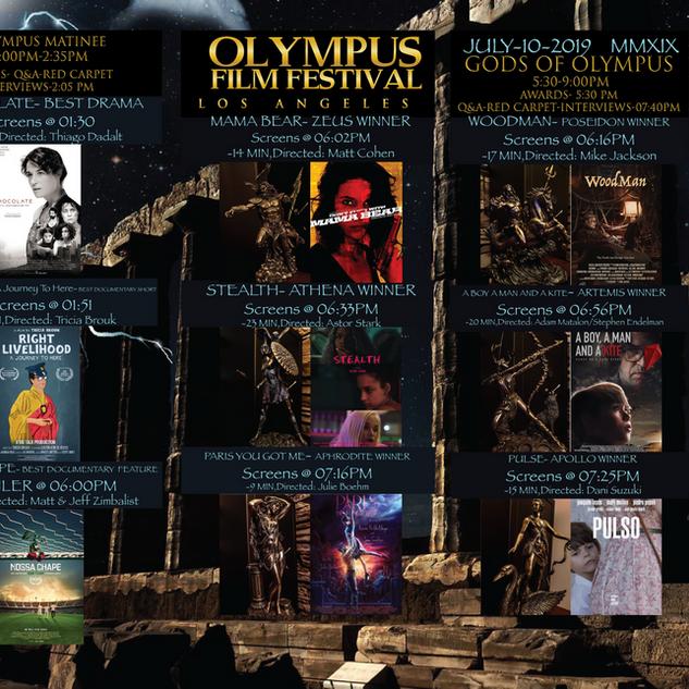 Olympus Film Festival 14x8.5_NDF_Brochur