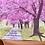 Thumbnail: Cherry Blossoms Card