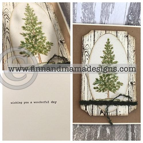 Evergreen on Woodgrain, Wonderful Day