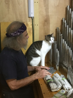 George consults Purrcy