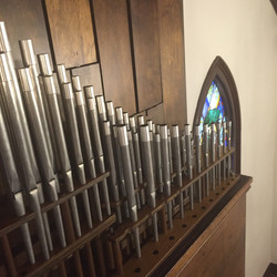 Organ is cleaned after uncovering