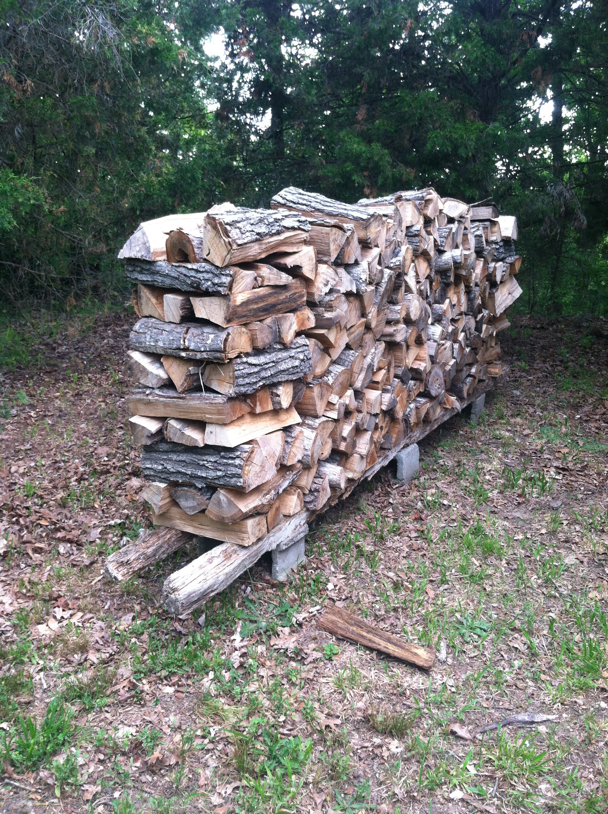 Our most important asset - firewood!