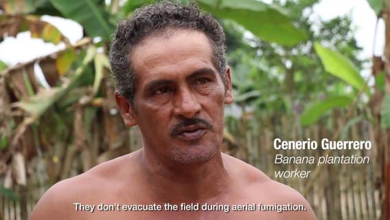 ¿Cómo vive un trabajador bananero con su familia?