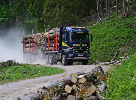 Holz vom Berg