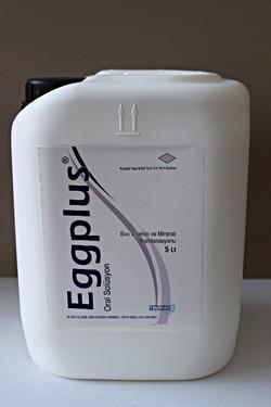EGGPLUS