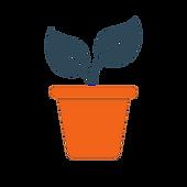 plant colour.png