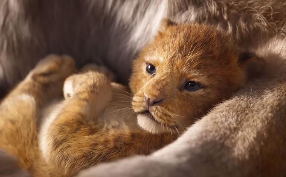 the-lion-king-2019.jpg