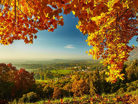 Le bon moment pour changer ? Et si c'était l'automne...