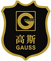 BIG - GAUSS FURNITURE LOGO GOLD.png