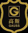 BIG - GAUSS FURNITURE LOGO GOLD.png