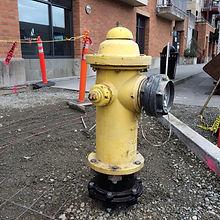 yellowhydrant.jpg