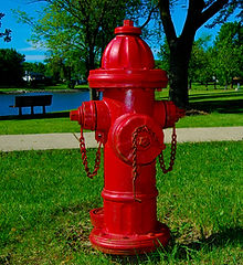 bigstock-Red-Fire-Hydrant-In-Park-5211659.jpg