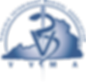 VVMA logo_transparent background.png