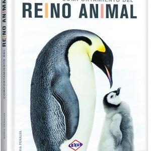 COMPORTAMIENTO DEL REYNO ANIMAL