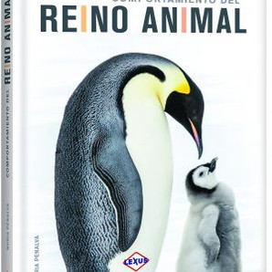 COMPORTAMIETO DEL REYNO ANIMAL.jpg