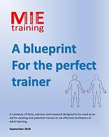 A blueprint for the perfect trainer - Co