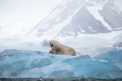 On Blue Ice